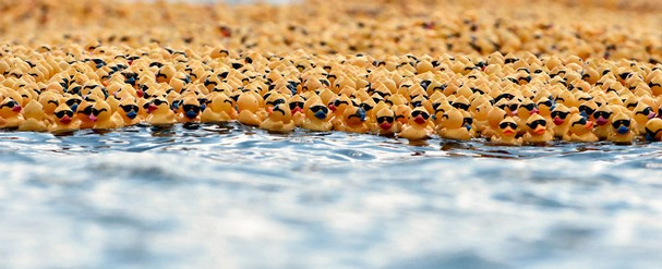 Duck Race – March 19th